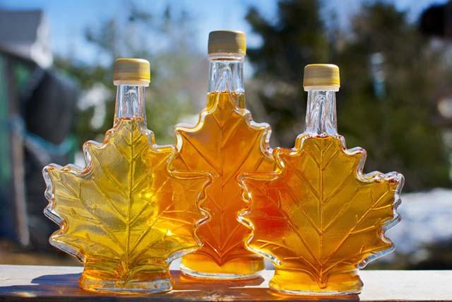 Maple Syrup siro tu nhua cay phong o canada