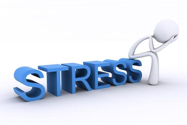 Stress là gì